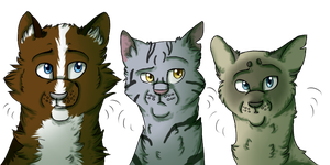 Skyclan high ranks by LUMlN