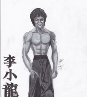 BRUCE LEE by lrayjus21