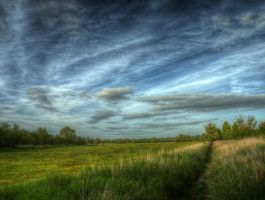 Meadow Sky by OliHDR