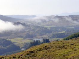 Early Morning Misty Landscape by martinemes
