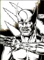 Wolverine: Don't Piss Him Off by PeterPalmiotti