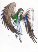 Maximum Ride OC by llteaniebeanie
