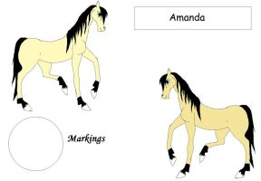 SDS Amanda by Horses-Echo