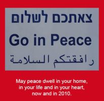 Peace 2009 by dpt56