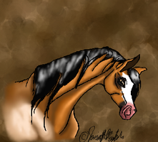 Storm Front on iscribble by SilverRuby14
