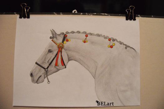 Andalusian portrait A4 by Bewlyer