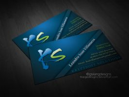 Business Card by margedesigns