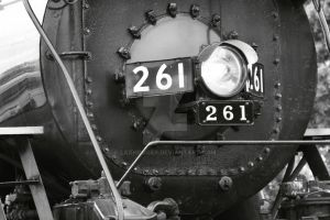 Nose of the 261 by laxhogger