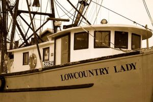 LOWCOUNTRY LADY by absoluteandrew