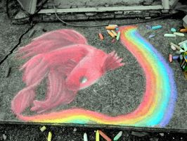 Siamese Fighting Fish (Sidewalk Chalk) by SapphireSketchbook
