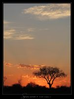 Satara Sunset II by Crooty