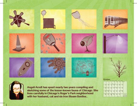 Hidden Chicago Calendar BCover by theangeli