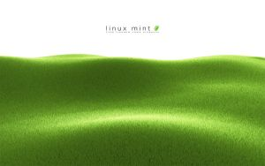 Linux Mint Grass by jernau
