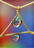 Drop Catcher II by SheilaBrinson