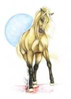 Dressage Palomino by moonfeather