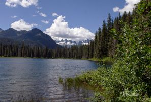 Cooper Lake  by TRunna