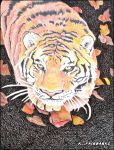 Tiger in Fall Leaves (color pencil drawing) by eyeqandy
