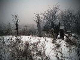 winter4 by candy691977