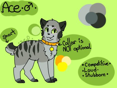 Ace Ref 2017  by Starry-Eyed-Fox