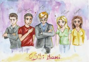 CSI Miami group by SirSubaru