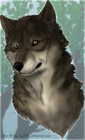 Random Wolf Head by CrazeyWulf
