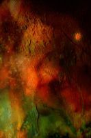 Free Texture 18 by SprenklePhotography