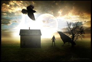 Where the crows have truth by Andenne