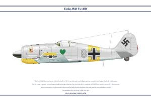 Fw190A4 JG54 2 by WS-Clave