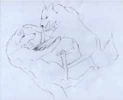 Two Fighting Wolves by ZacharyWolf