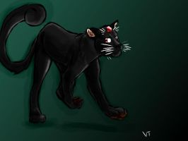 Black Persian--FanArt by Electrical--Volttail
