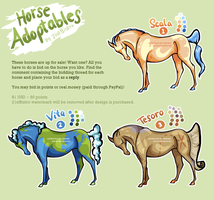 Horse Adoptables [Set 1] by SheSaidNevermore
