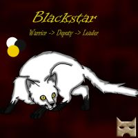 4. Blackstar by SassyHeart