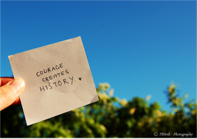 - Courage Creates History by TRSeth