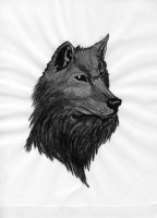 China ink wolf by draks