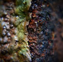 rusted outlet macro by PAlisauskas