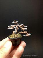 Small 2-color wire bonsai tree by Ken To by KenToArt