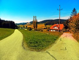 Countryside road with two options by patrickjobst