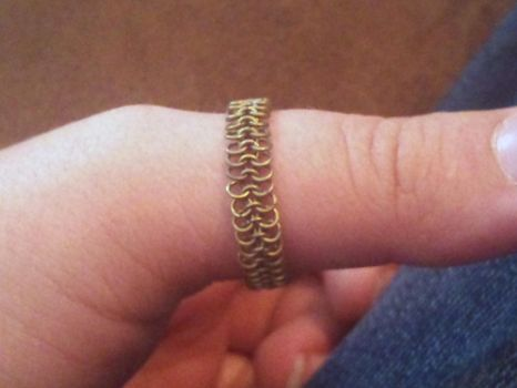 Titanium Chainmaille Ring by Mommy-of-Monsters