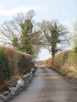 Road by pictsy