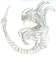 Predalien by cahook2