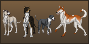 Dogs of Bushidou Ranch by samuRAI-same