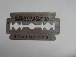 Stainless Steel Blade Side 1 by thewayur