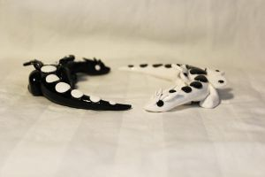 yin and yang dragons white by KiwiPheonix