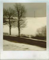 Hivernal by moumine-polaroid