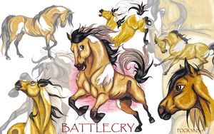 collage of battlecry by pookyhorse
