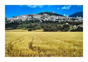 Assisi by aquapell