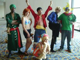 one piece crew by captainryno