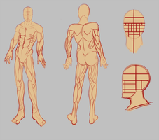 Male body pose and reference sheet update by Spork-