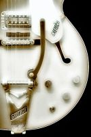 Gretsch in Black and White by robgbob