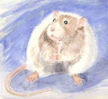 Rotund Rodent by divamentalis